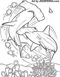 Animals For Hammerhead Shark Line Drawing Shark Coloring Pages Coloring Books Drawings