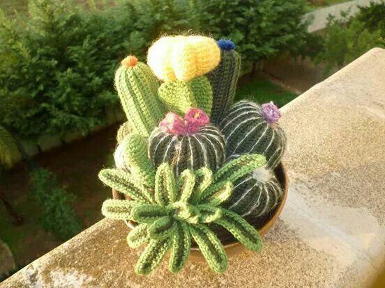 Composizione Piante Grasse All Uncinetto Crochet Cactus Crochet Garden Crochet Plant