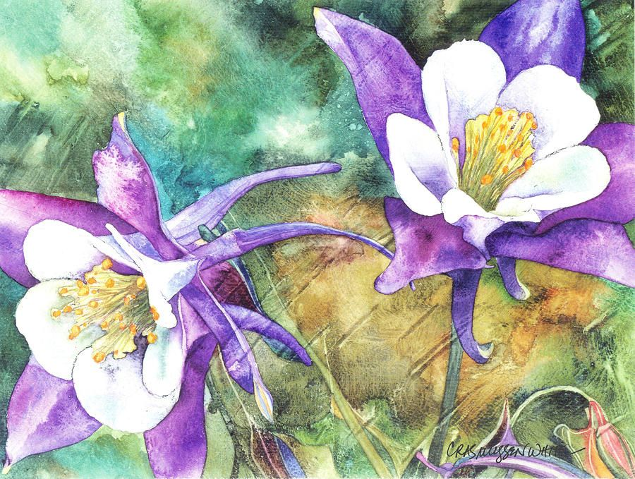 Spring Rain - Casey Rasmussen White  Fine Art America