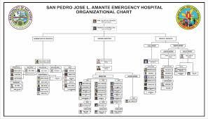 Organizational Chart Jose L Amante Emergency Hospital  Cdt