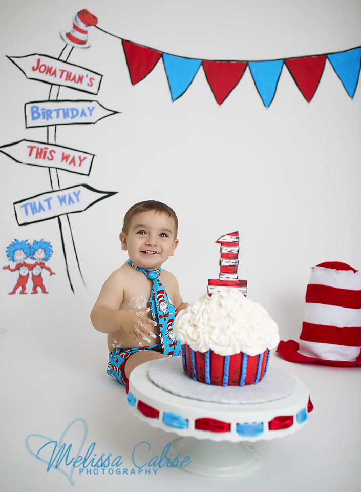 Phenomenal Melissa Calise Photography 1St First Birthday Cake Smash Dr Funny Birthday Cards Online Aeocydamsfinfo
