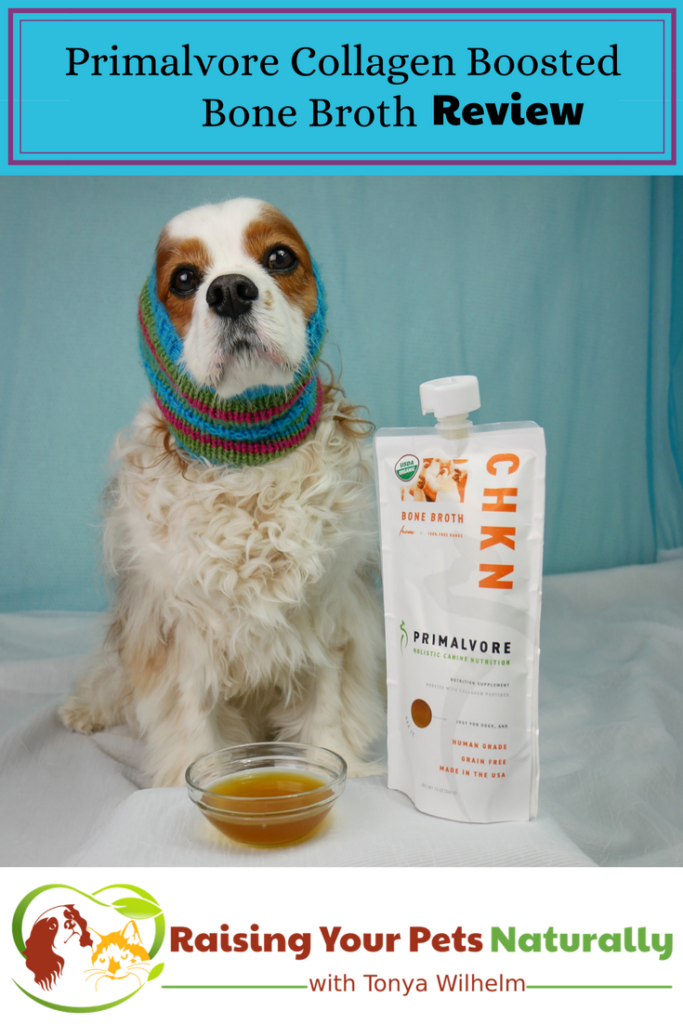 Health Benefits Of Bone Broth For Dogs Pets Dog Care Dogs