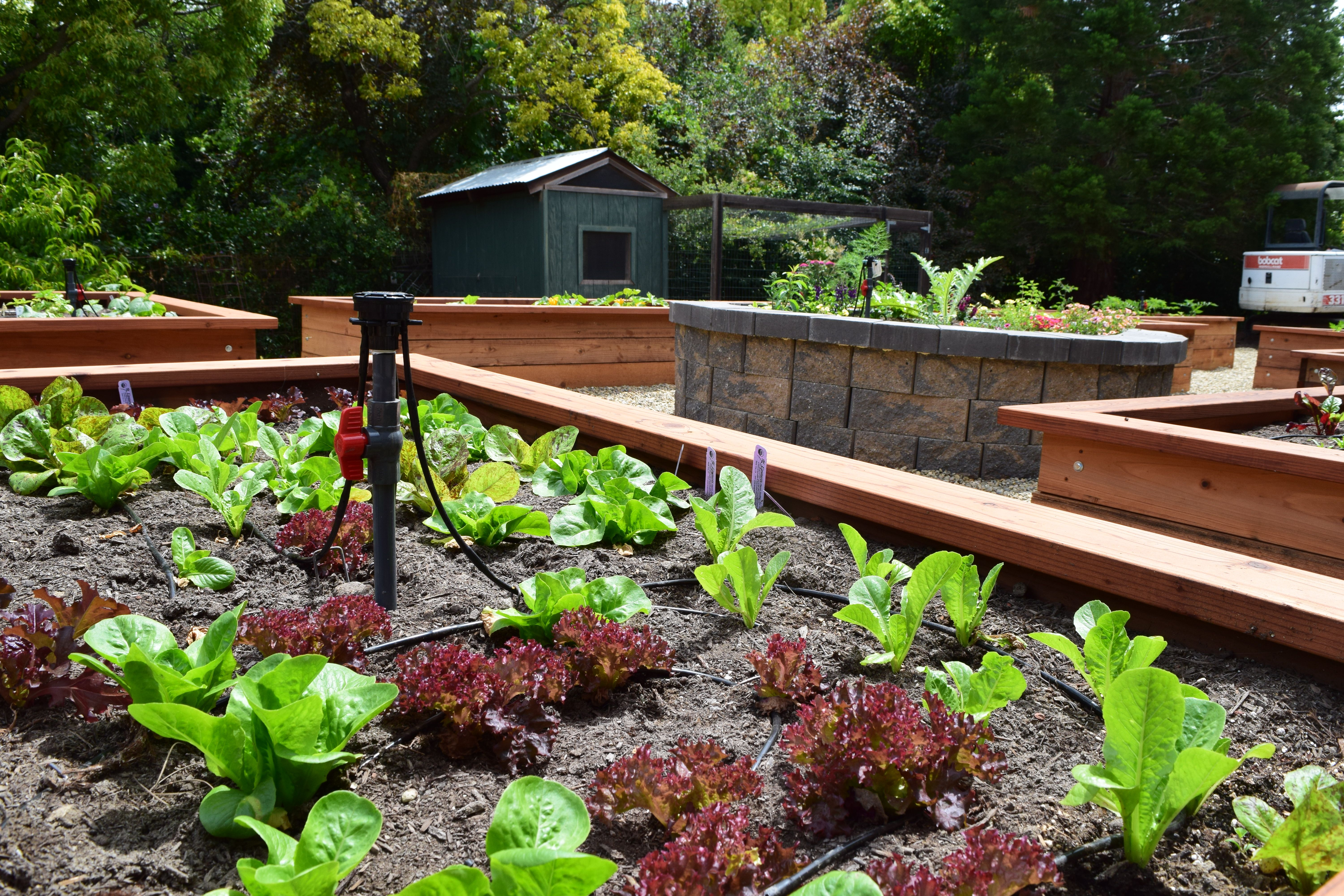 Want to have a garden like this? We can help you grow your ...