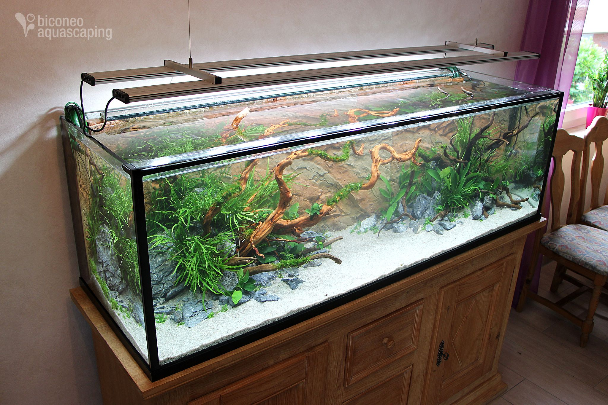 kundenprojekt aquascaping pinterest aquascaping aquarium und aquaristik. Black Bedroom Furniture Sets. Home Design Ideas