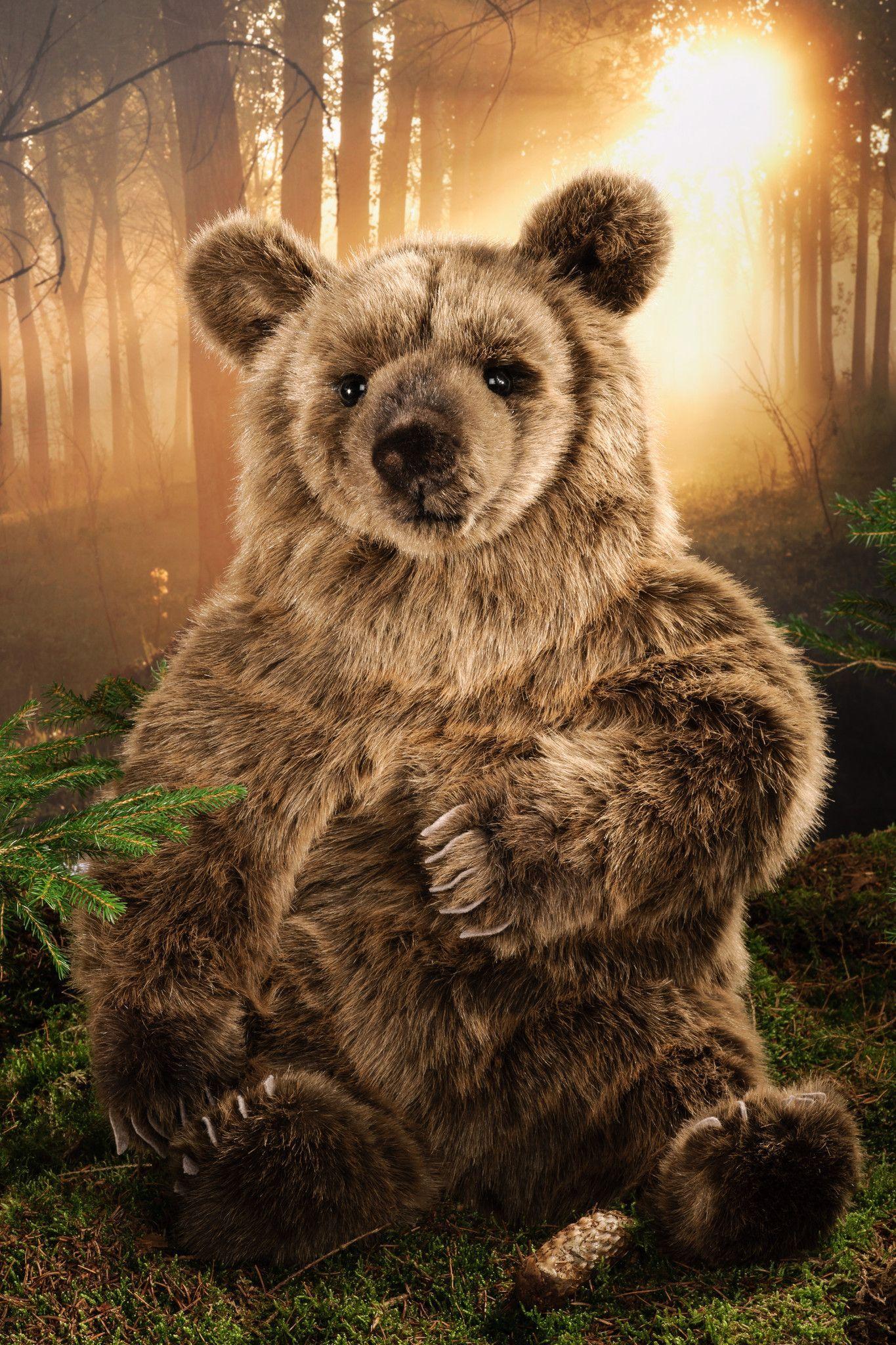 """Valentina"" Brown Bear Brown bear, Animals, Large"