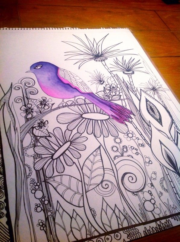 Black and white all but the bird, which is purple | Art: Animals ...