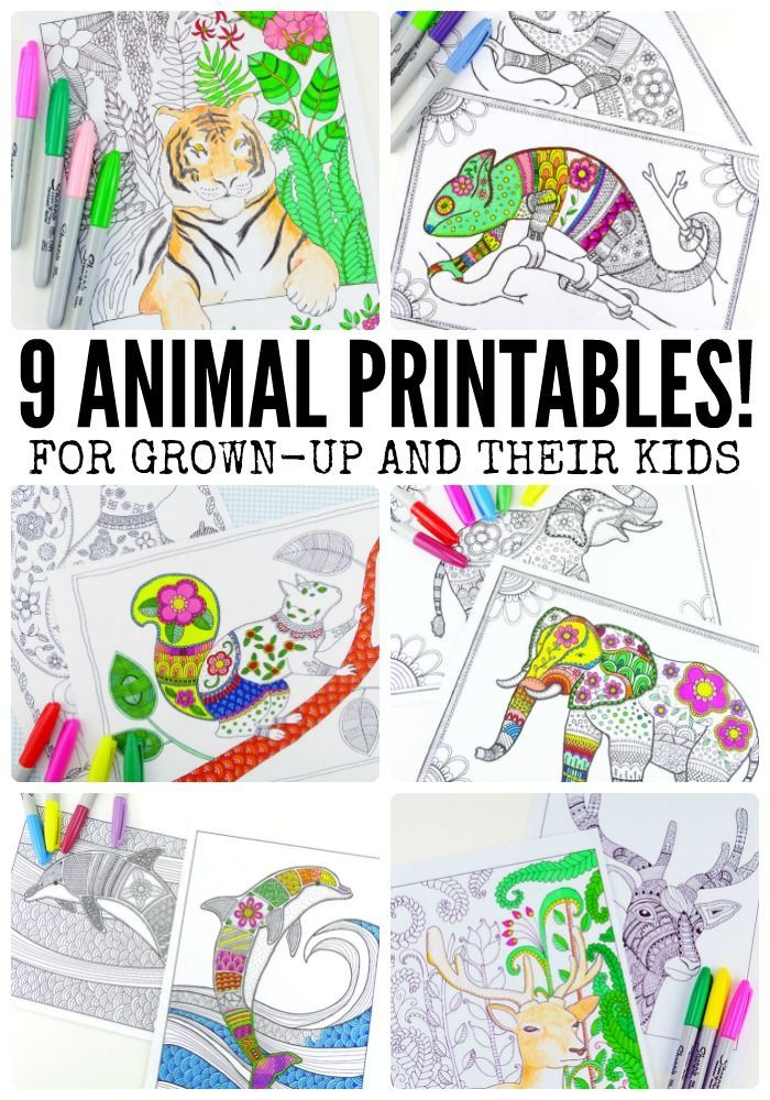 9 Animal Printables  Coloring Pages for Adults  Adult coloring