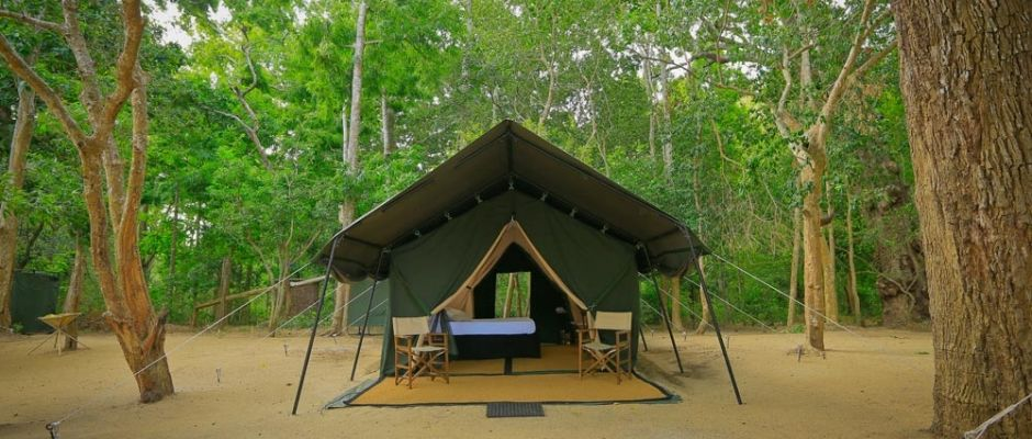 Leopard Trails | Classic Mobile Camping | Sri Lanka's jungle adventures