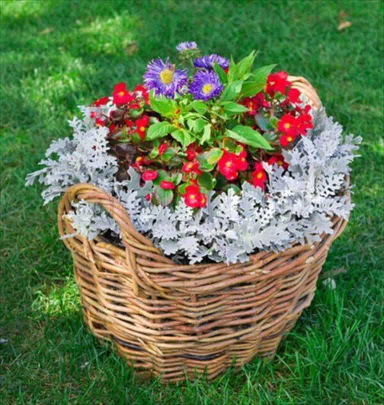 10 Easy DIY Container Flowers Ideas For Your Wonderful Simple Garden is part of Container flowers, Garden containers, Flower garden design, Flower planters, Container gardening, Creative gardening - There's no need to spend big bucks on planters and flower pots  Look around the house or scour thrift stores and flea markets for unique vessels to hold plants, herbs, and vegetables  An old …