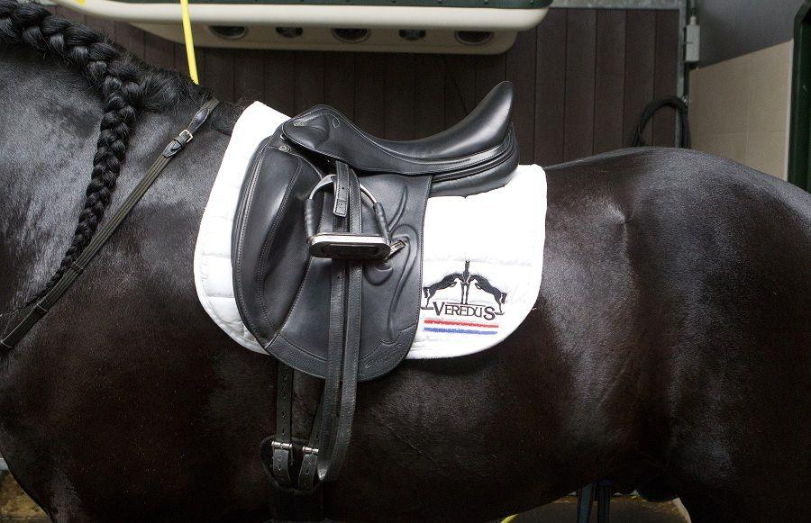 paardrijden materieel in Nederland  #ruitersport #zadeldekje #hoofdstel #rijbroek #jodphur #peesbeschermer #halster #zweetdeken   Telefoon: + 3153-7555564 E-mail: info@paardenshop.nl