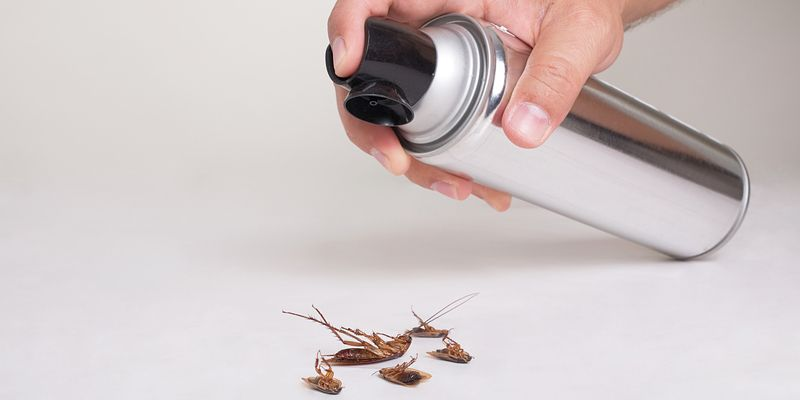 Pest control services are very effective at getting rid of pests