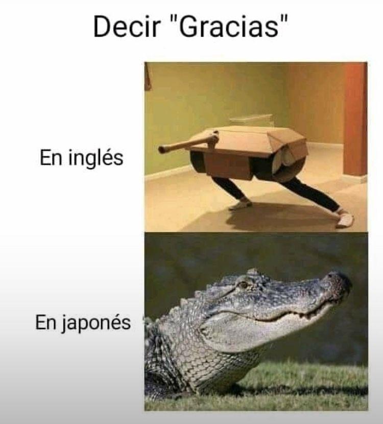 Pin De Almadashie En Frases Y Memes Gracias En Ingles Decir No