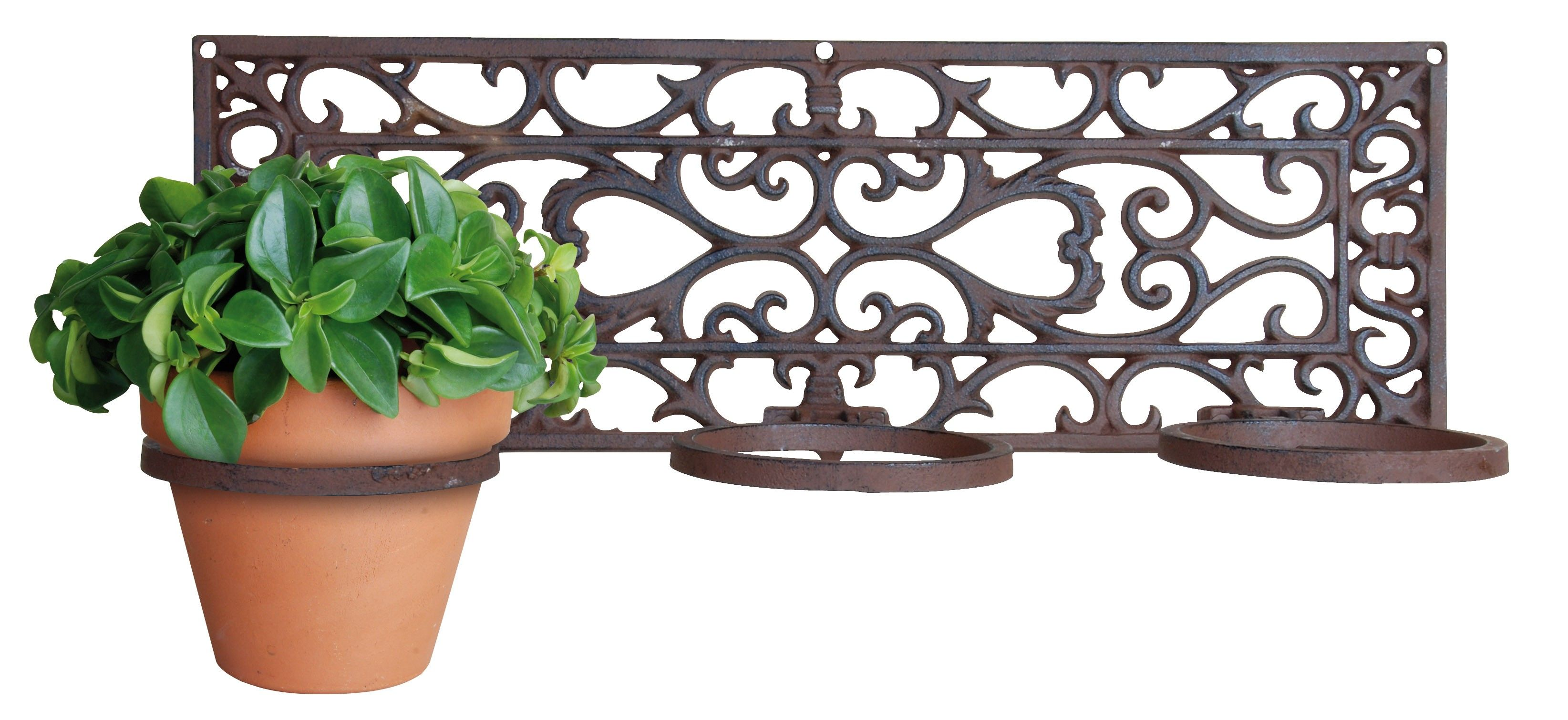 Wall Mounted Plant Holders Metal | New House Designs