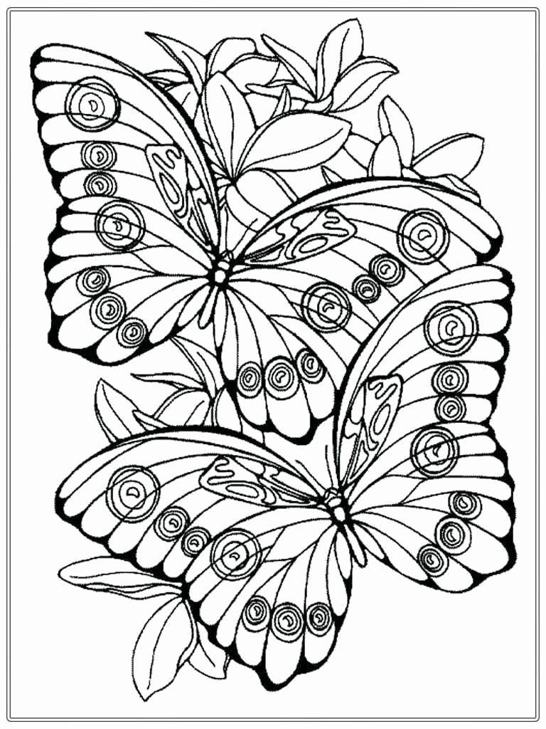 Spring Coloring Page Adults Spring Coloring Sheets For Adults Abstract Coloring Pages Butterfly Coloring Page Detailed Coloring Pages