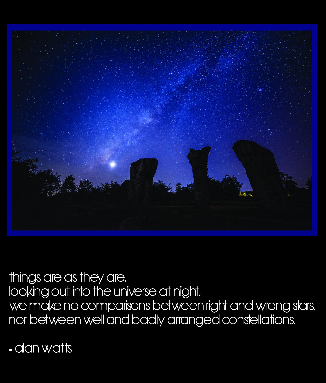 Alan Watts Inspirational Quote http//yoga0sanctuary