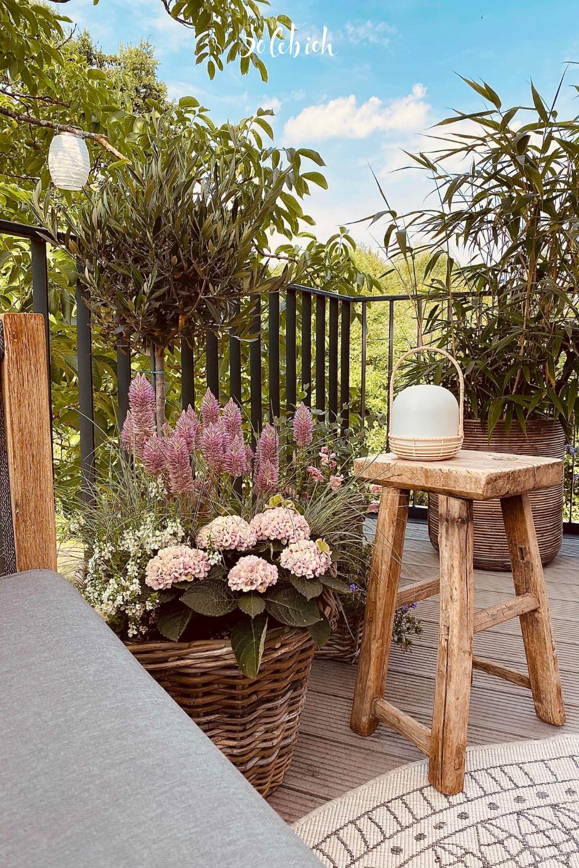 Terrassengestaltung Bilder Ideen In 2020 Garten Bepflanzen Vorgarten Anlegen Terrassengestaltung