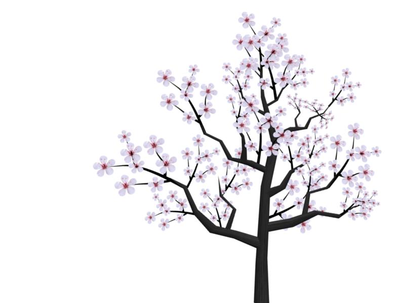 Cartoon Cherry Blossom Cherry Blossom Cartoon Rooster Blossom