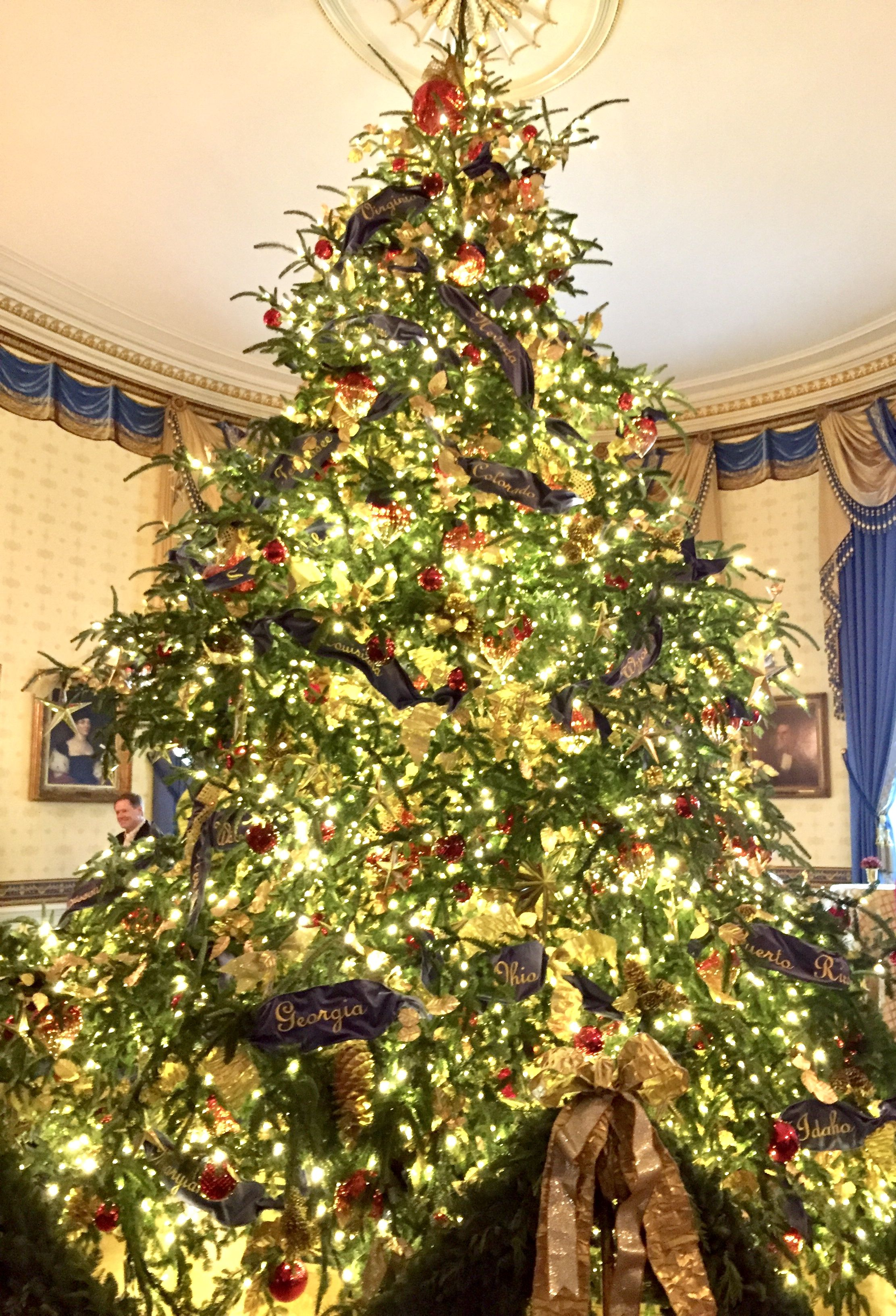 Christmas At The White House 2018 White House Christmas Decorations White House Christmas Blue Room Christmas Tree