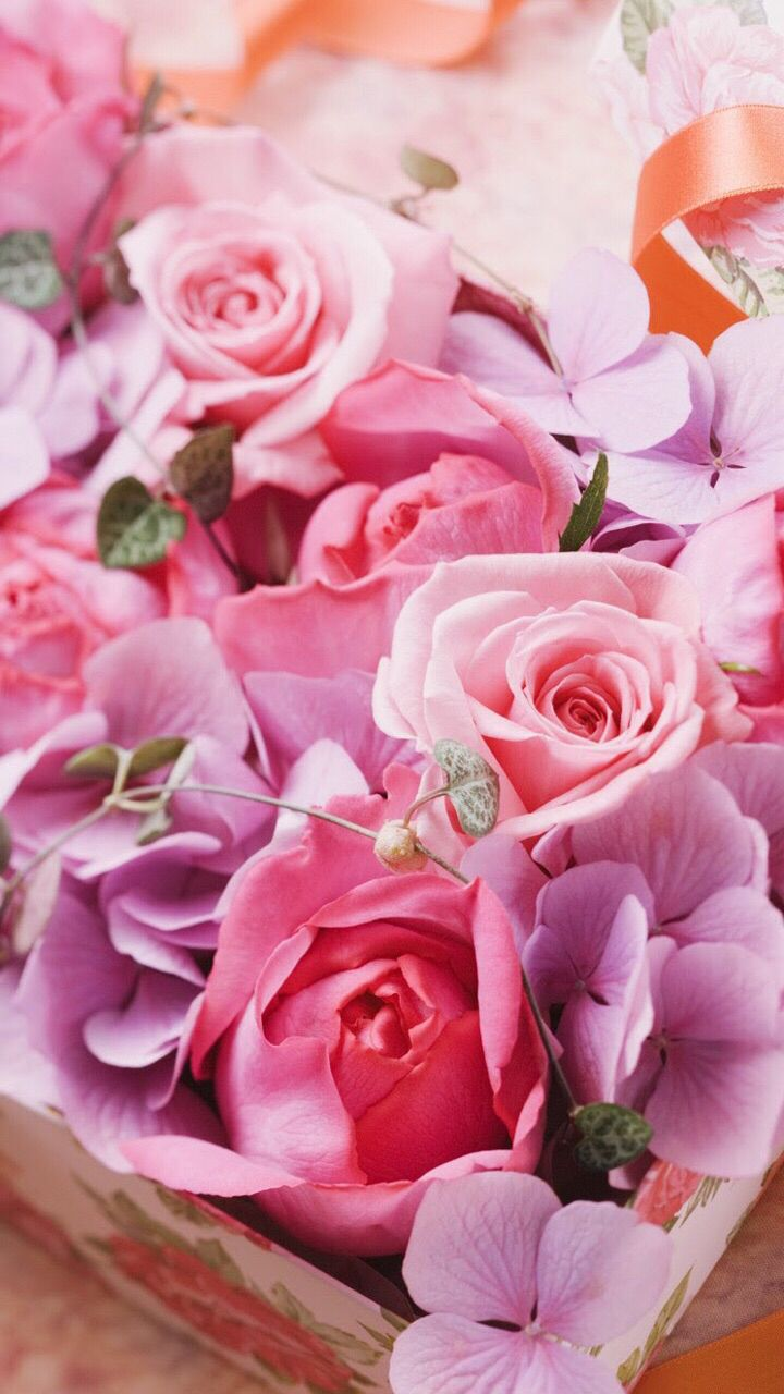 Pin by faye clements on iphone wallpapers flowers - Pink rose wallpaper iphone ...