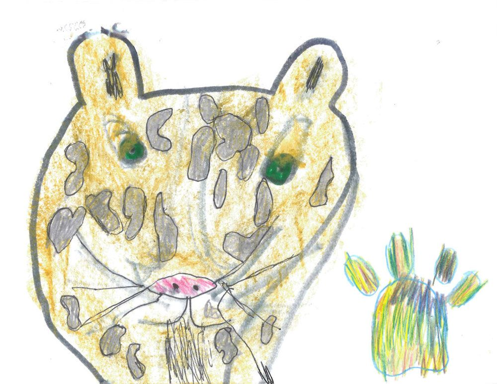 To WWF-UK, thank you for saving snow leopards. From Isabella, age 6. Can you help us to save snow leopards for Isabella?