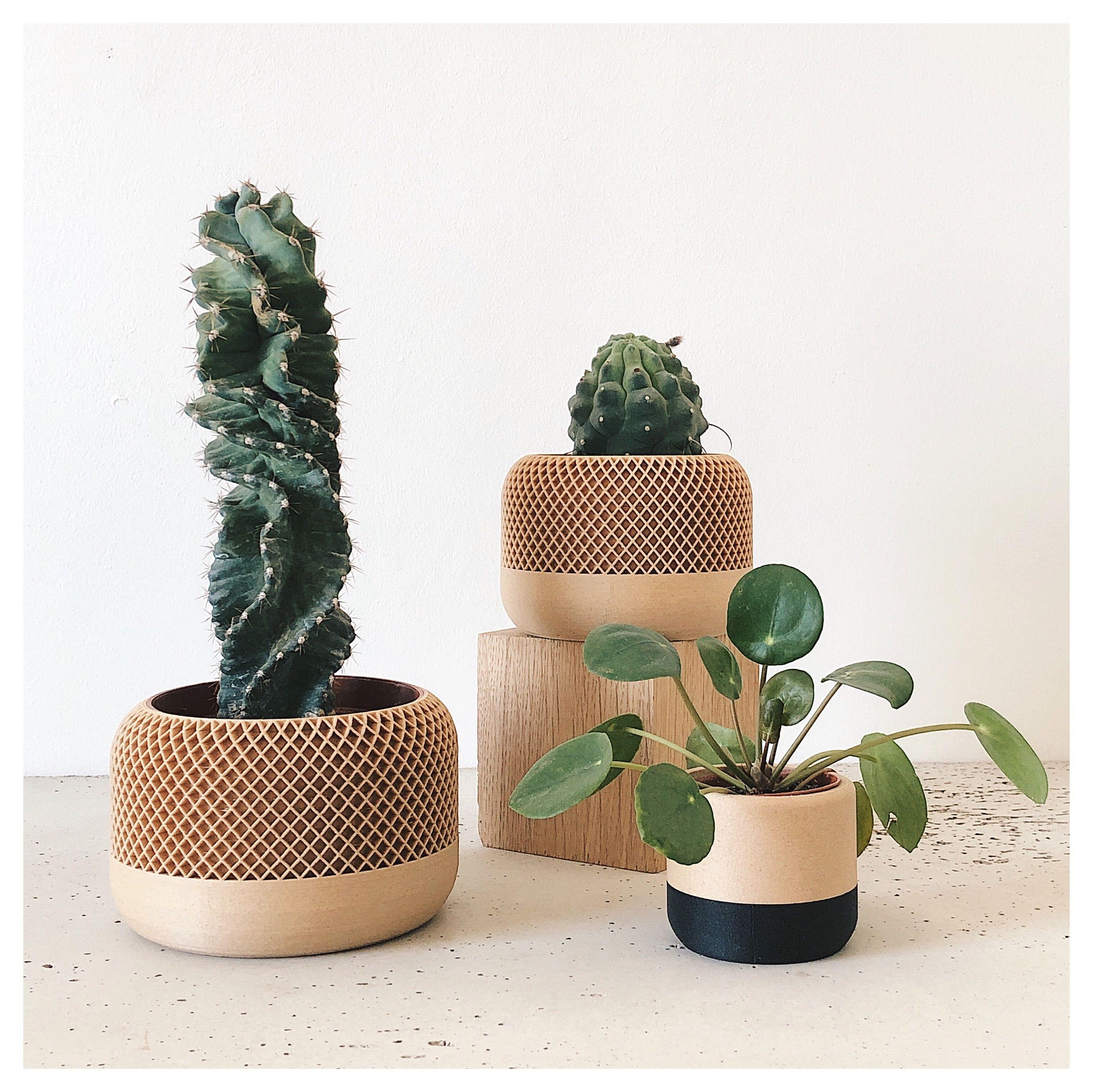 Pot Plante En Bois indoor wood planter - apple - original planter gift en 2020