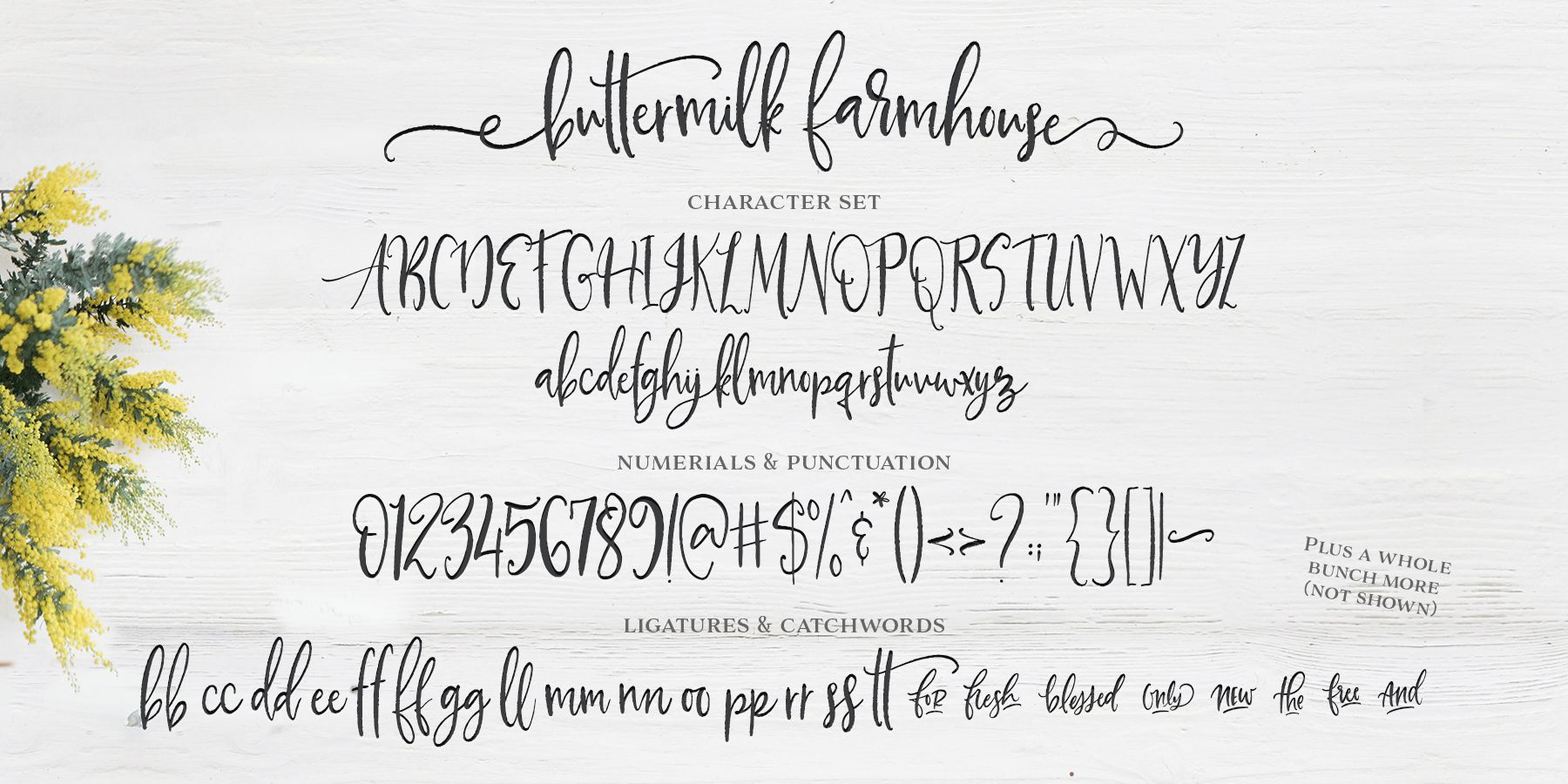 Check out the Buttermilk Farmhouse font at Fontspring