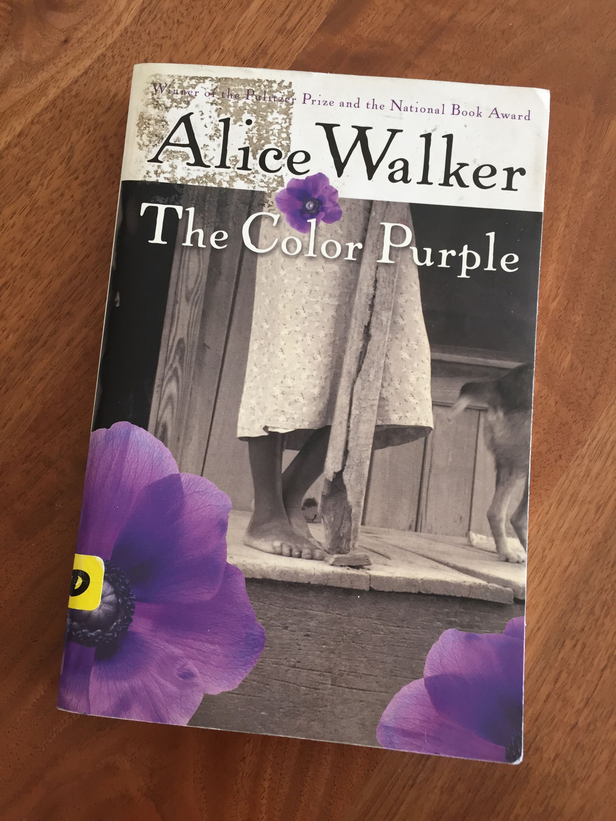 Story in Review: The Color Purple by Alice Walker | Alice walker ...