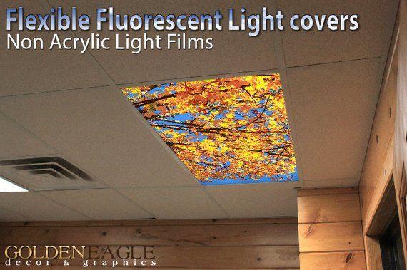 Astronomy 014 Fluorescent Light Covers