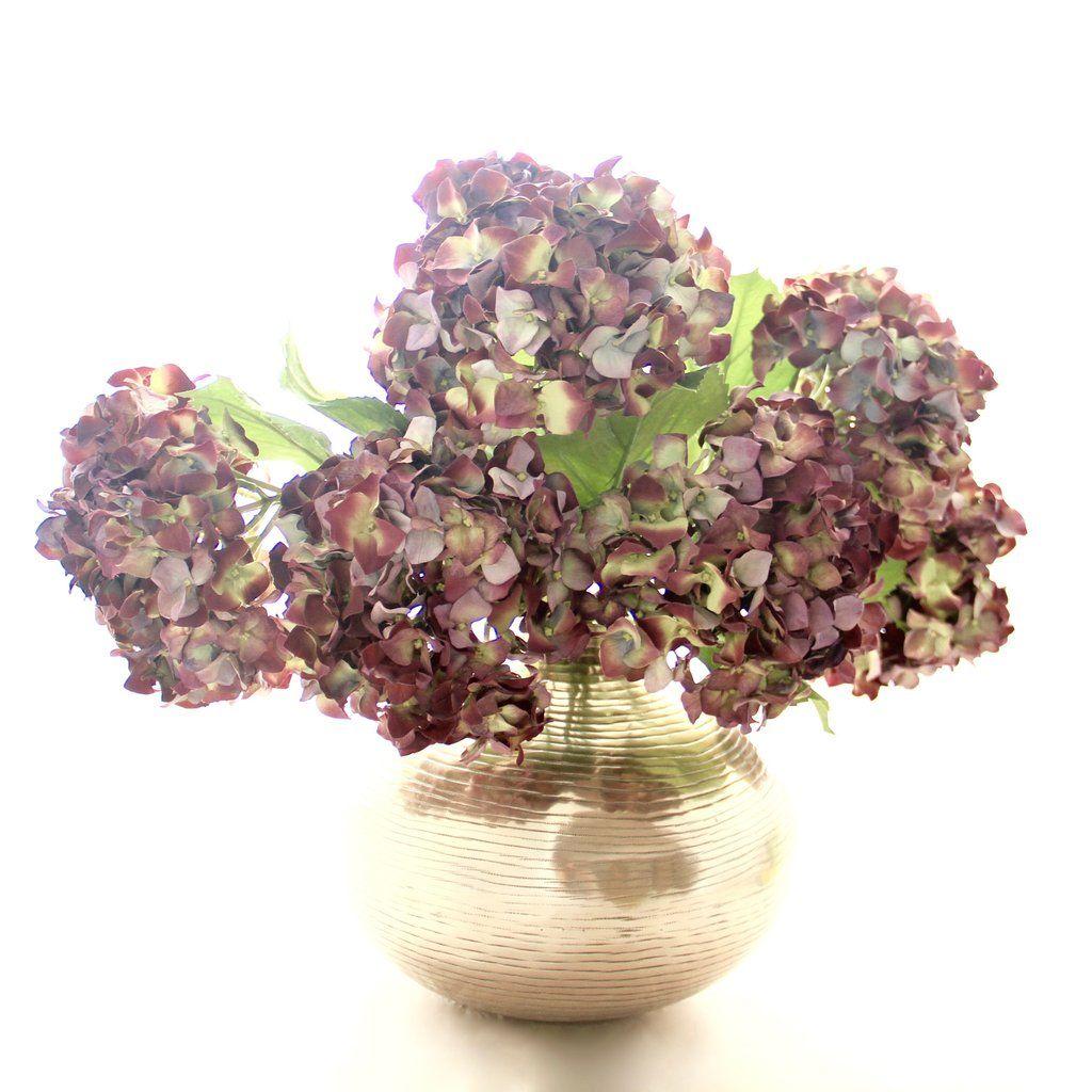 Purple Dried Hydrangea Bunch Of 6 Stems Hydrangeas Hydrangea
