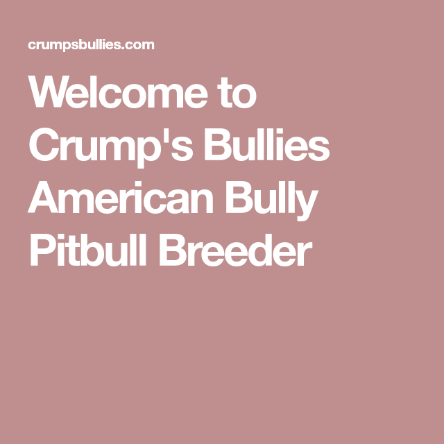 Welcome To Crump S Bullies American Bully Pitbull Breeder Pitbulls American Bully Pitbull Bully Pitbull