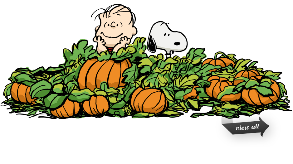 The Great Pumpkin Snoopy Halloween Great Pumpkin Charlie Brown Pumpkin Patch Pictures