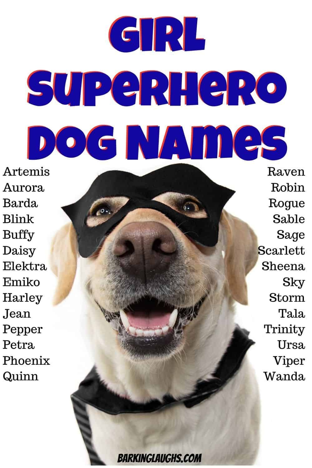 Female Dog Names And Meanings In 2020 Dog Names Female Dog Names Girl Dog Names