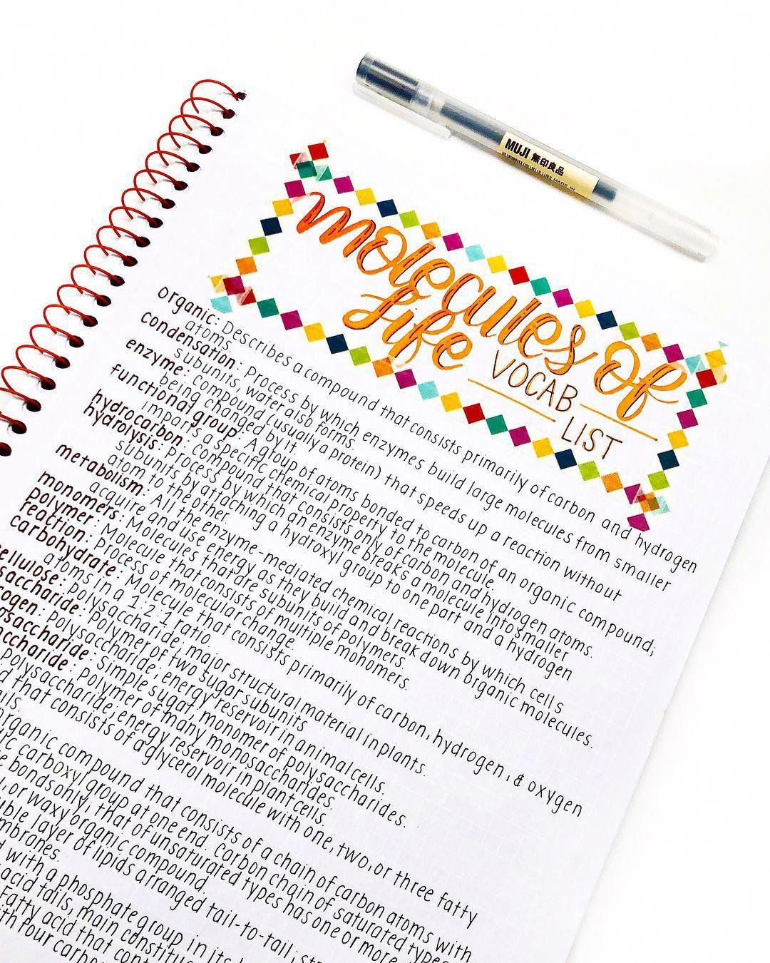 Neat Study Notes Study Notes Inspo Neat Printing Neat