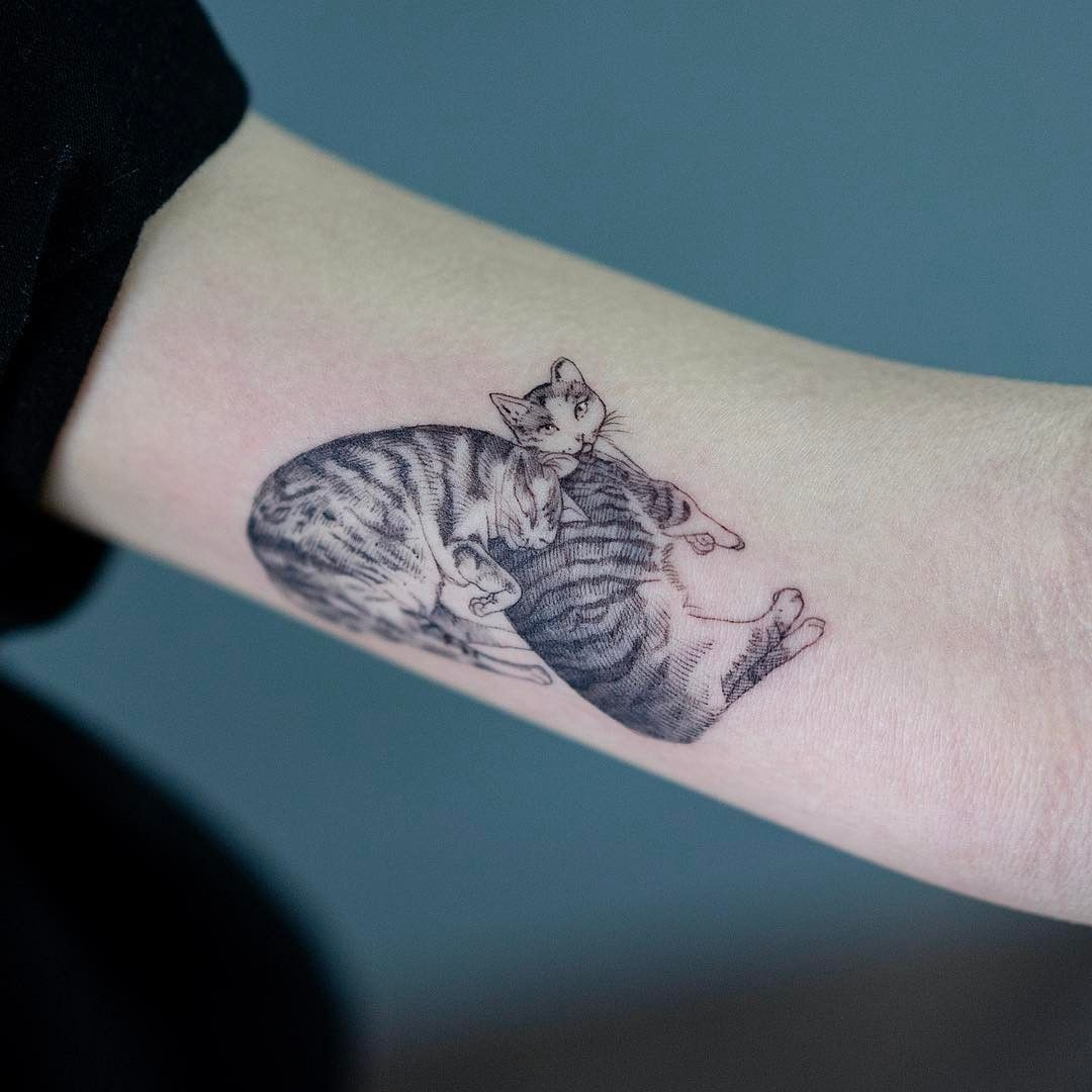 Mysterious cat tattoo: the meaning