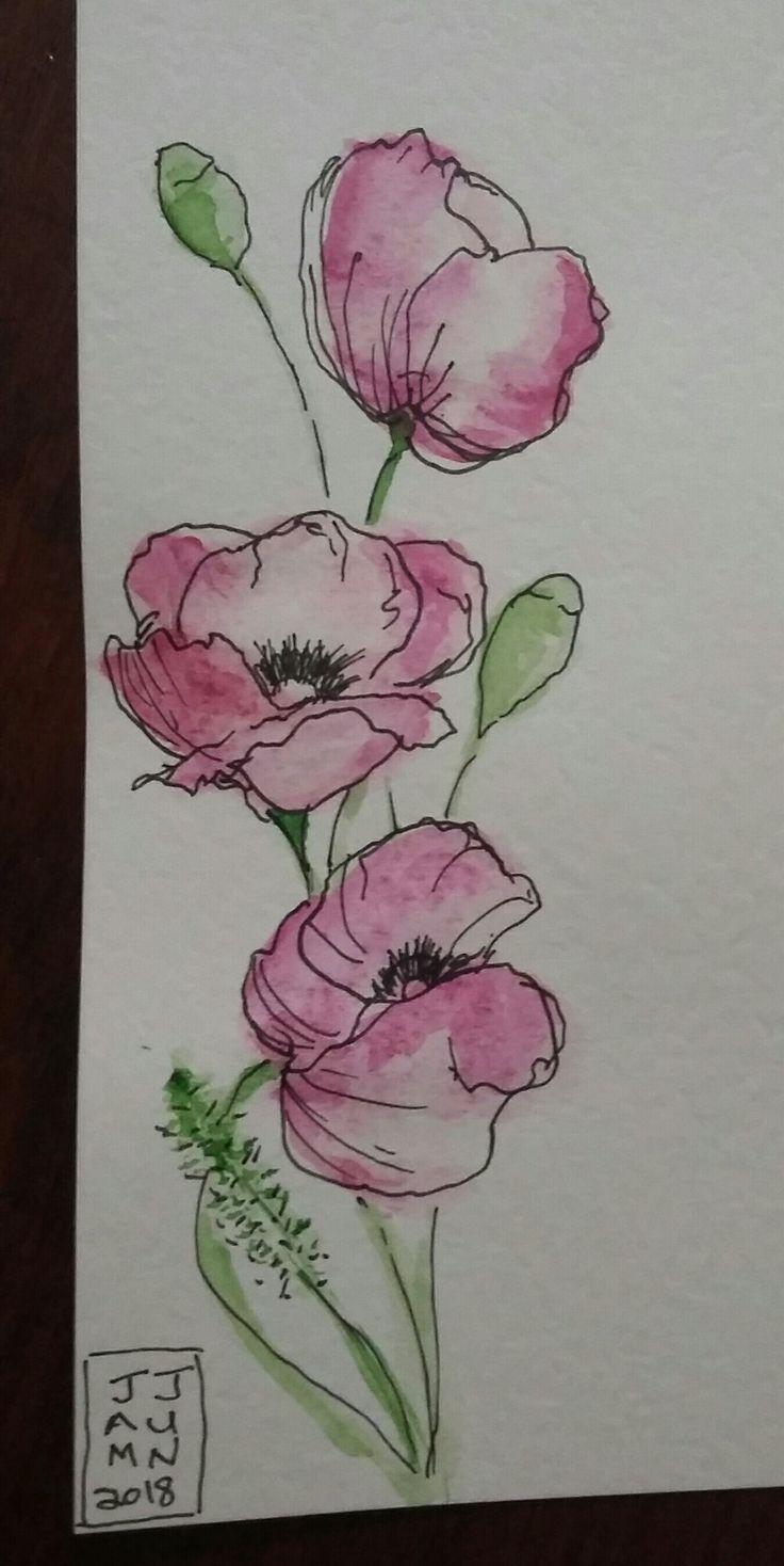 Aquarell Und Stift Aquarelle Et Encre Dessin Orchidee Comment