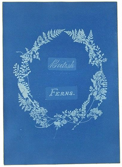 Cyanotype  by Anna Atkins (1797-1871)   Atkins was the world's first woman photographer and the first person ever to publish a photographically illustrated book (British Algae, 1843). She took up what she called 'Sir John Herschel's beautiful process of cyanotype' as soon as it was invented in 1842. This is the title page of her second series of botanical illustrations.