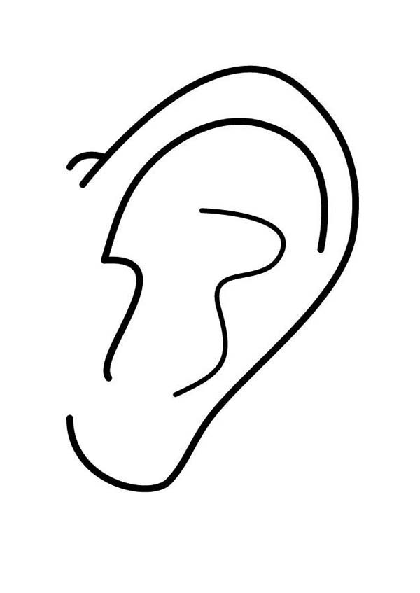 A Very Clean Ear Coloring Pages Kids Play Color Ear Picture Coloring Pages Ear Cleaning
