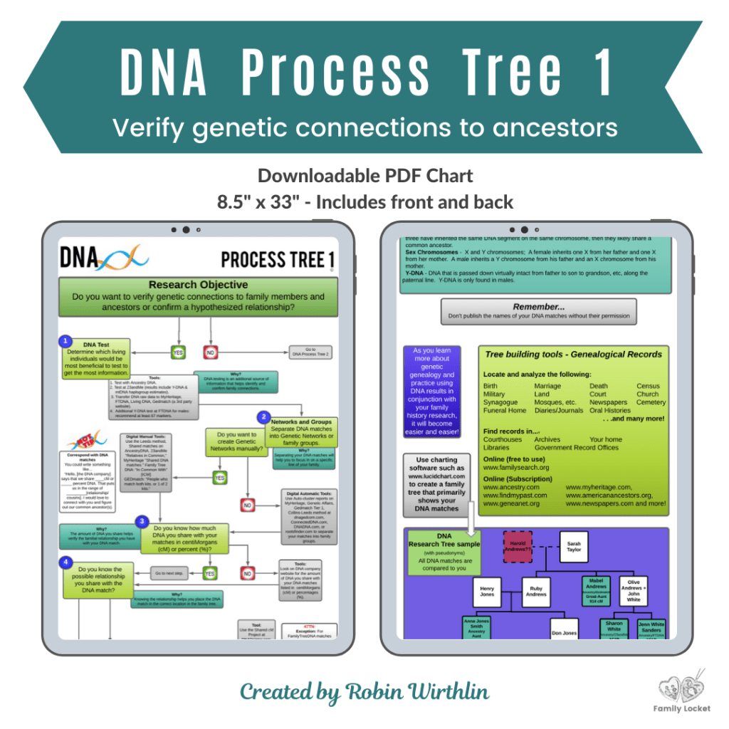 Dna Process Tree 1 Downloadable In