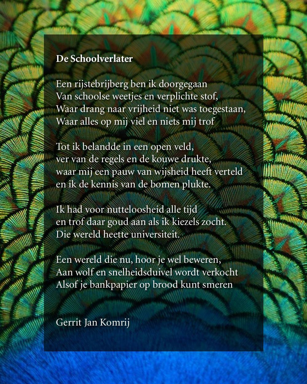 Citaten Gerrit Komrij : Een rijstebrijberg ben ik doorgegaan van schoolse weetjes