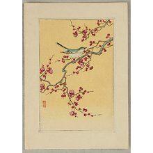 Ohara Koson: Bush Warbler and Plum - Artelino