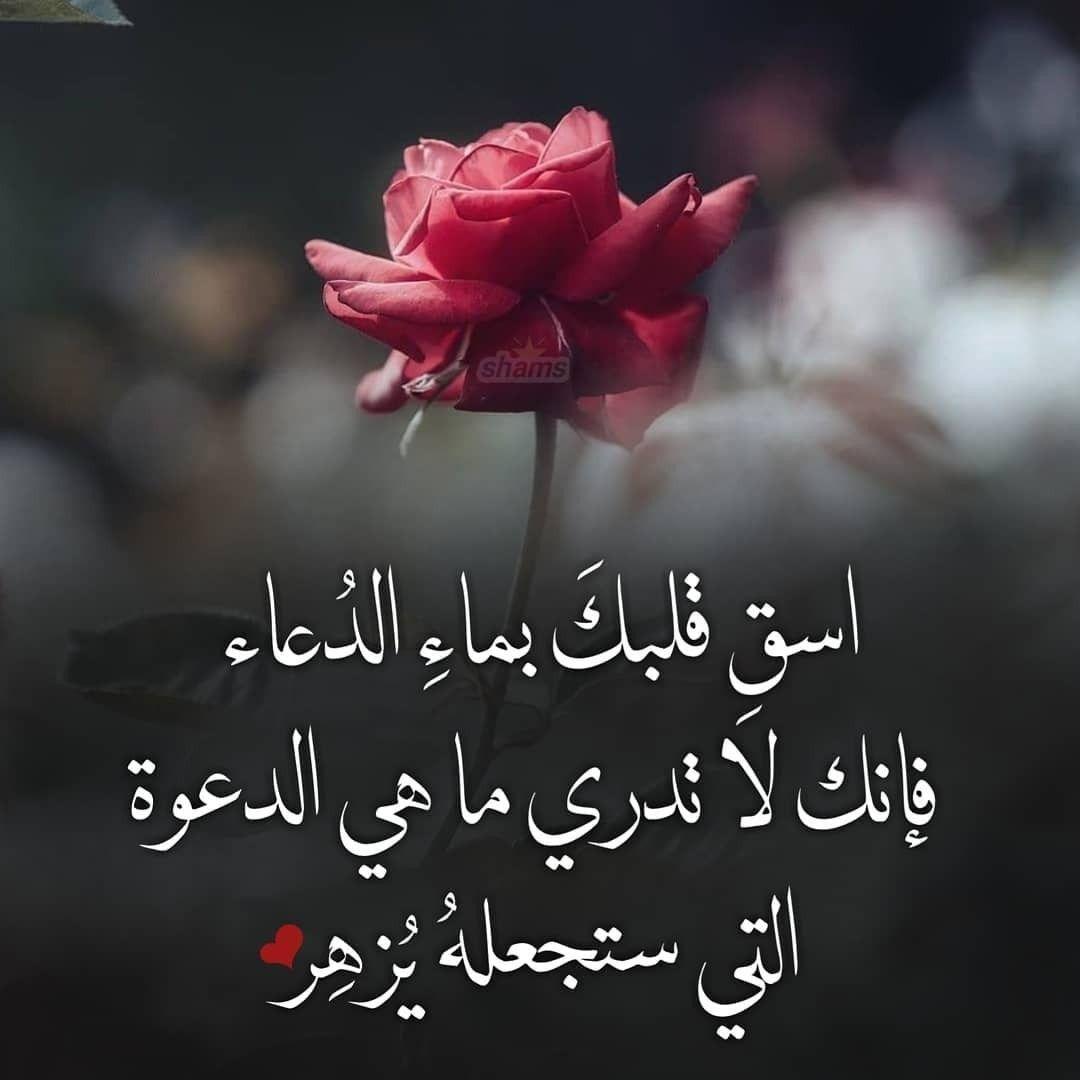 Pin By Heba Ba On أقول حكم ونصائح Arabic Quotes Lovely Quote Duaa Islam
