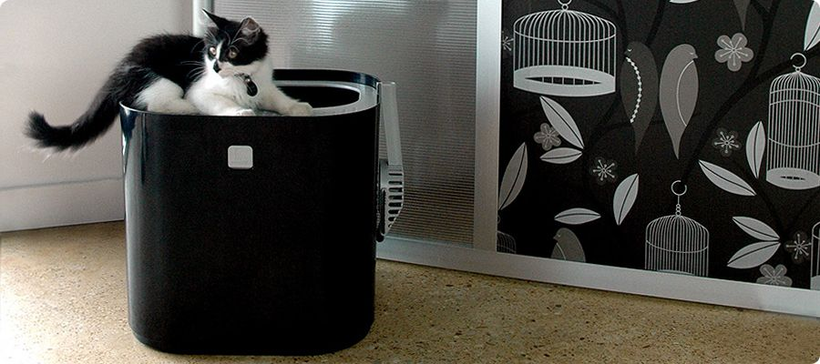 Modkat A New Design For Litter Boxes Keeps Everything Out Of