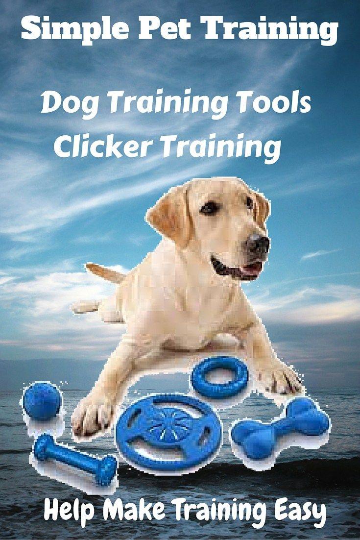Easy Clicker Dog Training Clicker Training Basics Dog Training Dog Training Tools Dog Clicker Training