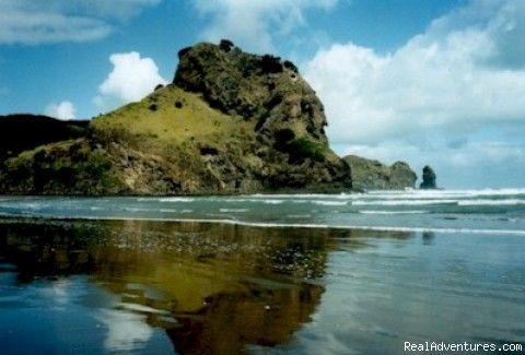 Piha Beach Auckland New Zealand