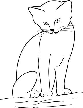 Ausmalbild Sitzende Miezekatze Ausmalbilder Katzen Niedliche Katze Malvorlagen Tiere