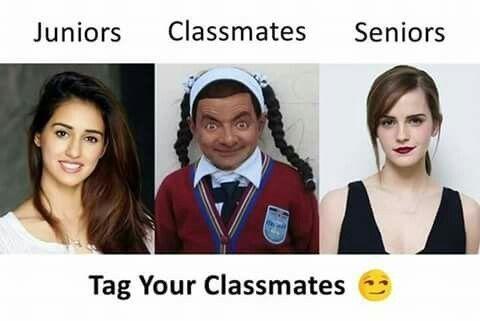 Classmates.... | Memes | Funny jokes, Funny comics, Jokes ...