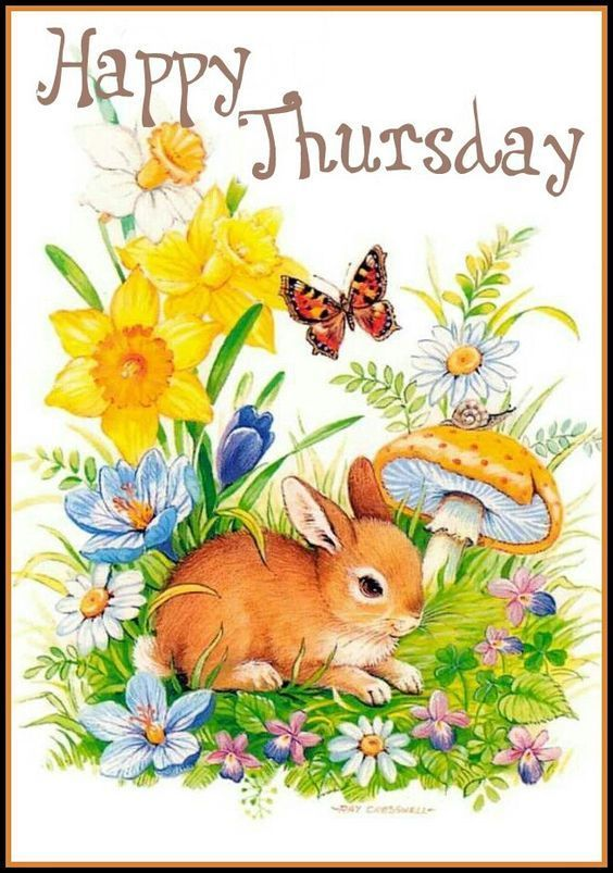 Happy thursday quotes pinterest thursday greetings happy happy thursday m4hsunfo