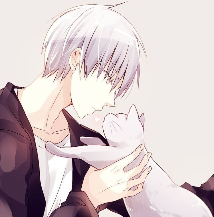 Anime Guy With A Kitty White Hair Anime Neko Anime Guys Anime Chibi
