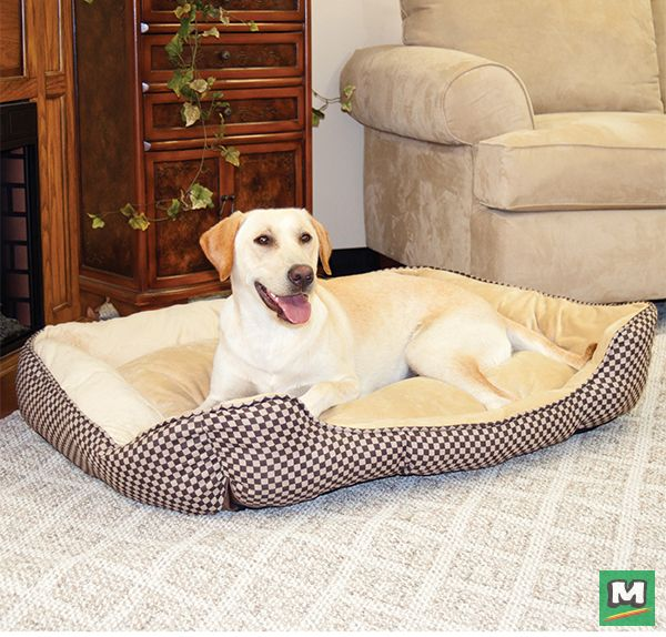 Perfect For Any Time Of Year This Self Warming Lounge Sleeper Will Help Your Pet Stay Warm All Year Round Built With A Special Pet Bed Pet Beds Indoor Pets