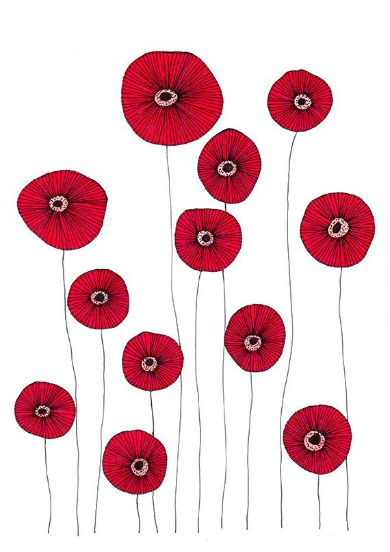 Original Drawing Poppy Flowers 2 85x12 Up To 24x34 Art Print